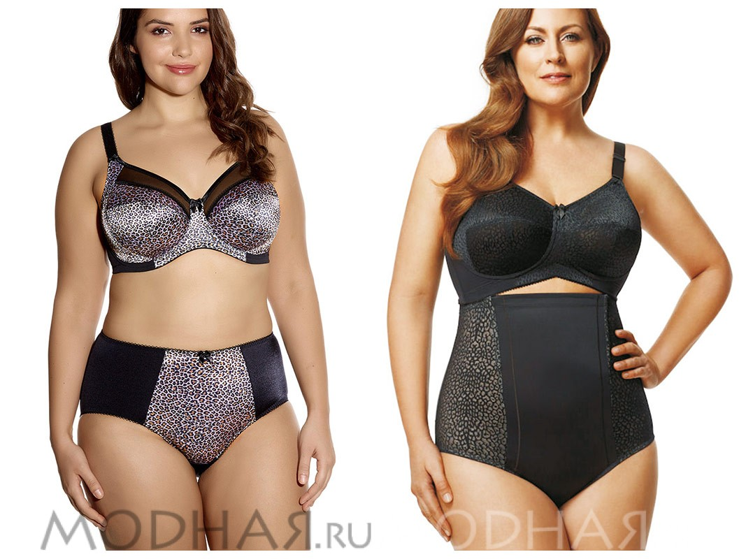 Бигбра Интернет Магазин Одежды Для Полных Женщин