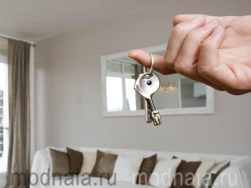 Аренда квартиры: что нужно знать